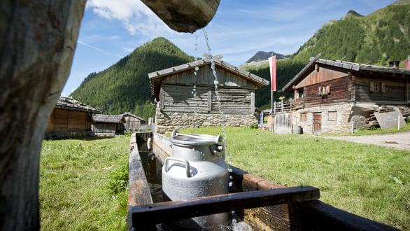 """""""Il Sentiero del latte"""" da Valles a Malga Fane"""